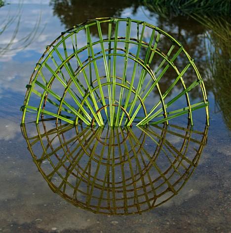 fesson-ludovic-wheel