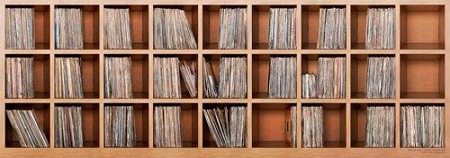 Vinylregal von DJ DSL