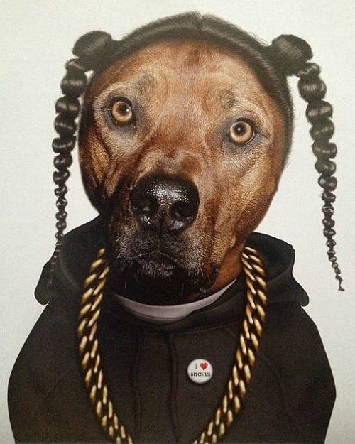 Snoop Dogg Dog