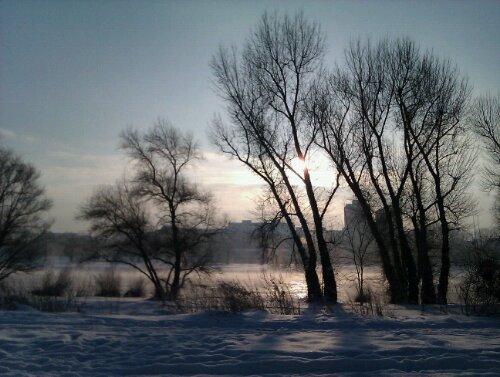 Winternebel an der Elbe