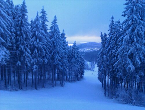Blick auf den Skihang